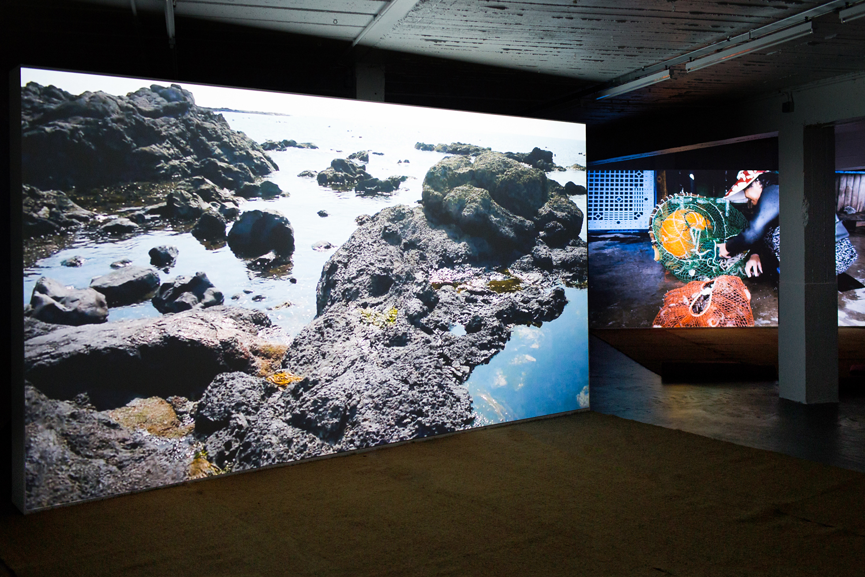Mikhail Karikis, SeaWomen, at Strombeek Cultural Centre, Belgium, 2015